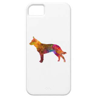 Australian Cattle Dog in watercolor iPhone 5 Cover