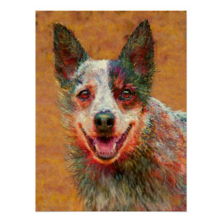 australian cattle dog poster