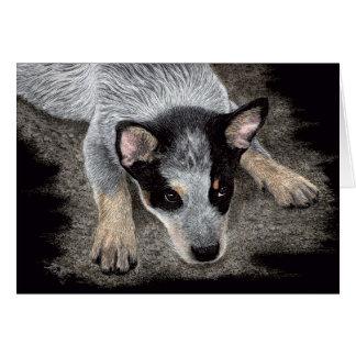 "Australian Cattle Dog Pup Card - ""Kona"""