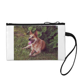 australian cattle dog red laying coin purse
