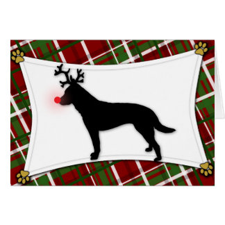 Australian Cattle Dog Reindeer Christmas Card