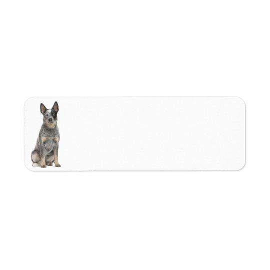 Australian Cattle Dog Return Address Labels