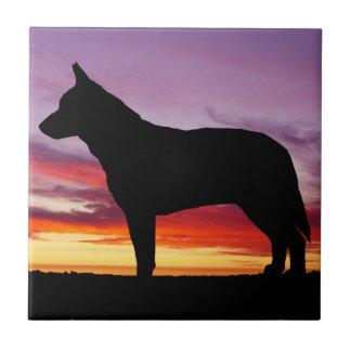 Australian Cattle Dog Tile