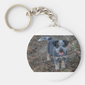 Australian Cattle Puppy Dog Keychain