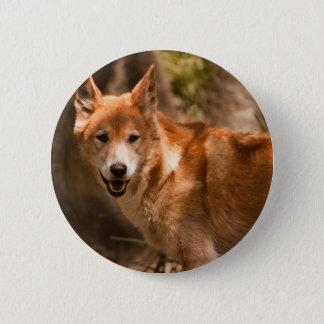 Australian Dingo badge 2 Inch Round Button