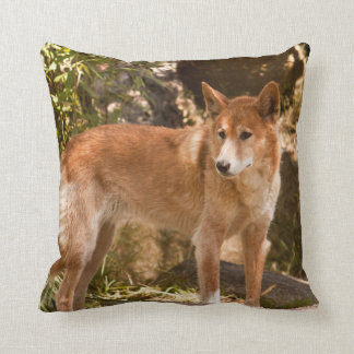Australian dingo throw pillow