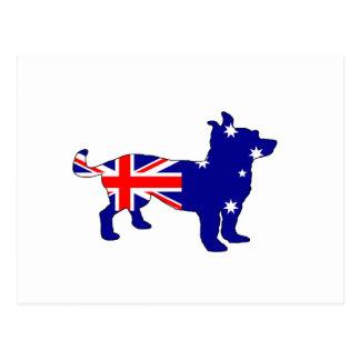 Australian Flag - Chihuahua Postcard