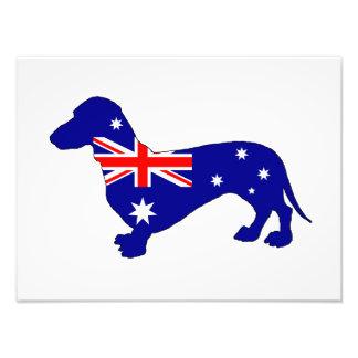 Australian Flag - Dachshund Photo