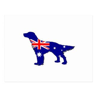 Australian Flag - English Setter Postcard