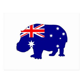Australian Flag - Hippopotamus Postcard