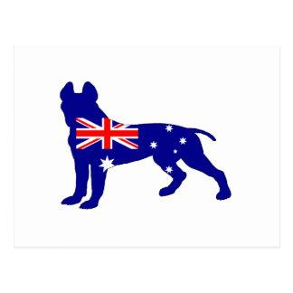 Australian Flag - Pit Bull Terrier Postcard