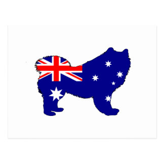 Australian Flag - Samoyed Postcard