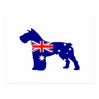 Australian Flag - Schnauzer Postcard