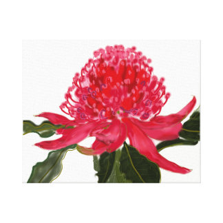 Australian Flower on Canvas