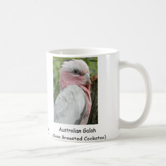 Australian Galah (Rose Breasted Cockatoo) Coffee Mug
