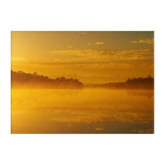 Australian golden sunrise acrylic print