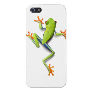 Australian Green Tree Frog - Super realistic case Case For iPhone 5/5S