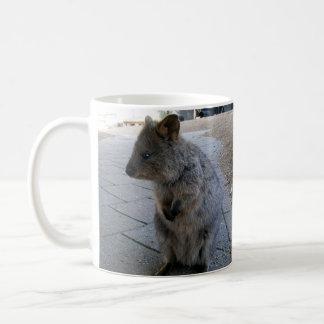 Australian Grey Furry Quokka, Coffee Mug