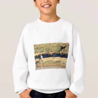 Australian kangoroo sweatshirt