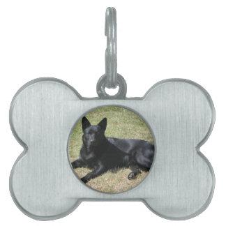 Australian Kelpie Dog Pet Name Tag