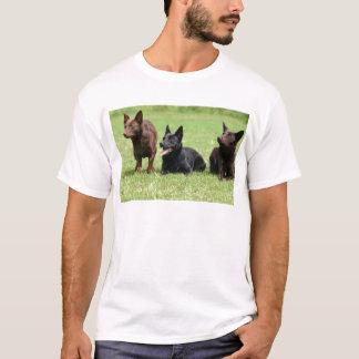 Australian Kelpie Puppies T-Shirt