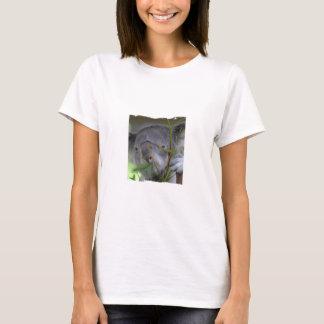 Australian Koala Ladies Shirt