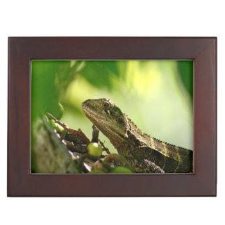 Australian lizard between leaves, Photo Keepsake Memory Box