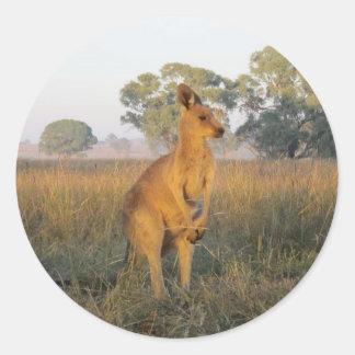 Australian Morning Product Range Round Sticker