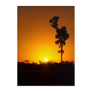 Australian outback sunset acrylic wall art