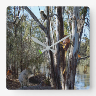 Australian Quokka With Aussie Wildlife, Square Wall Clock