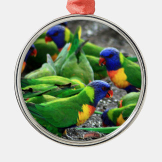 Australian Rainbow Lorikeets Silver-Colored Round Ornament