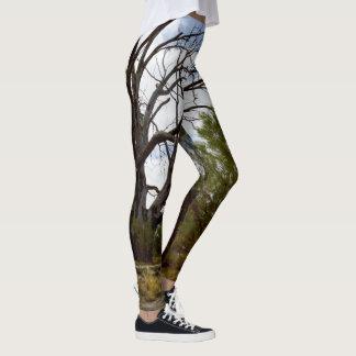 Australian Scrubland Trees, Leggings