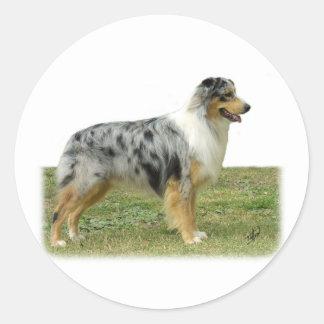 Australian Shepherd 9K7D-20 Round Sticker
