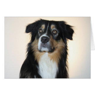 Australian Shepherd Aussie  Dog  Hello Love Card