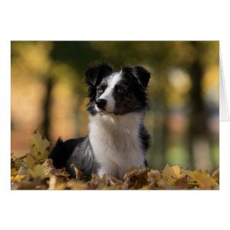 Australian Shepherd Aussie Puppy Dog  Hello Love Card