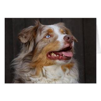 Australian Shepherd Aussie Puppy Dog  Love Hello Card