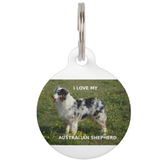 australian shepherd blue merle love w pic pet ID tag