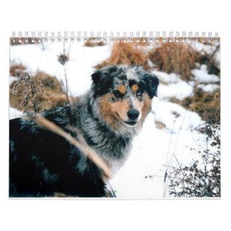 Australian Shepherd Calander Wall Calendar