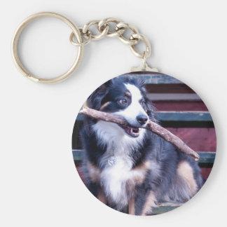 Australian Shepherd Card Keychain