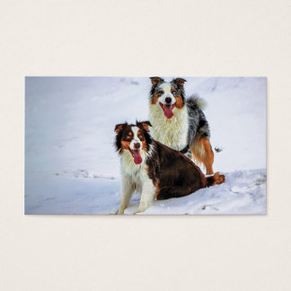 Australian shepherd couple dogs business card