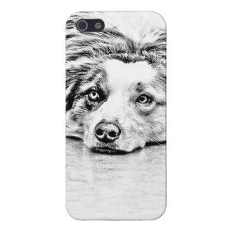 Australian Shepherd dog art Case For The iPhone 5