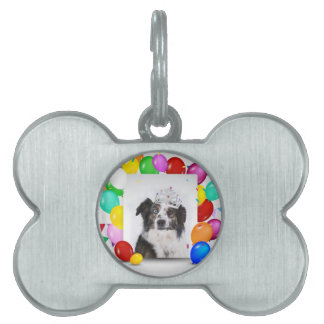 Australian Shepherd Dog Balloons Crown Birthday Pet Tags
