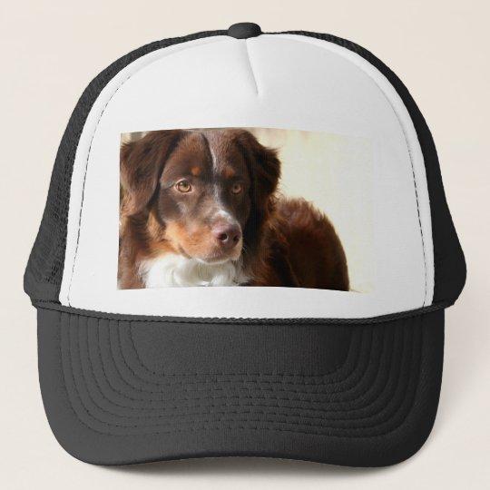 Australian Shepherd hat