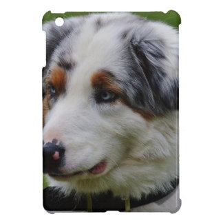 Australian Shepherd iPad Mini Cases