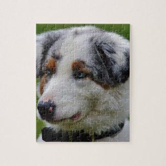Australian Shepherd Jigsaw Puzzle