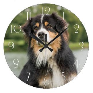 Australian Shepherd Large Clock