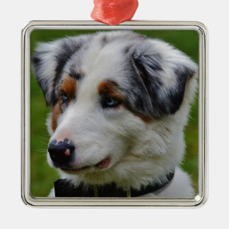 Australian Shepherd Metal Ornament