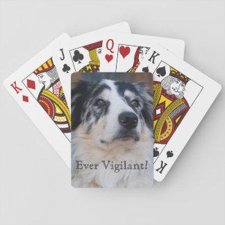 Australian Shepherd Mix Close Up Photograph Poker Deck