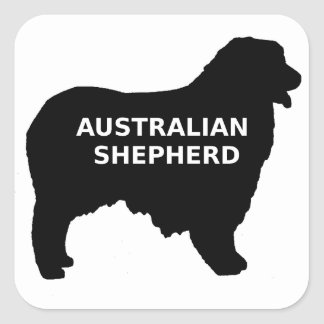 Australian Shepherd name silo Square Sticker