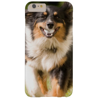 Australian Shepherd Playing With Ball Barely There iPhone 6 Plus Case